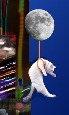 風船猫2.jpg